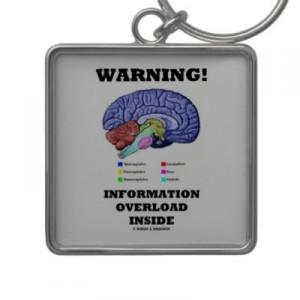 Ons brein is verslaafd aan informatie